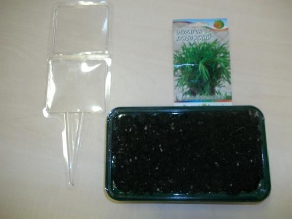 Для посадки нужны лоток, пакет с семенами и садовая рамка.